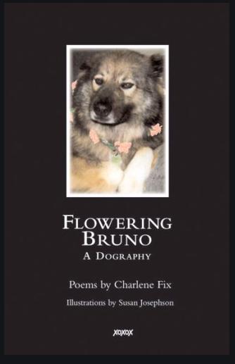 Flowering Bruno